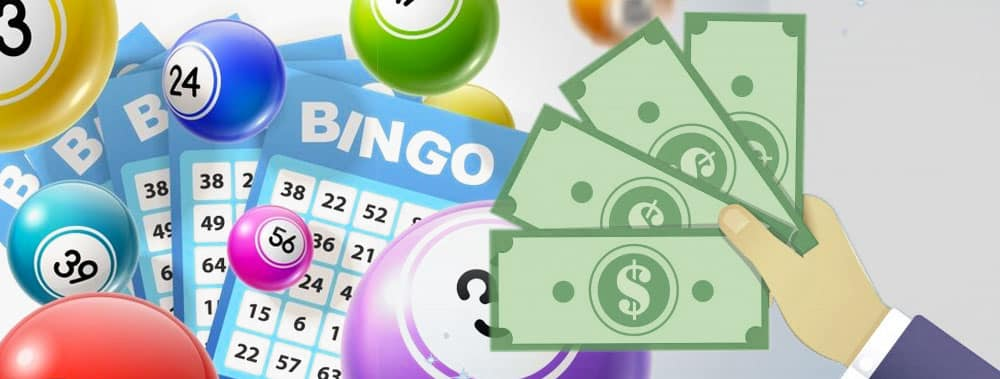 The Web and Free Bingo